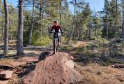 MTB with guide for groups