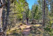 Cyklist på MTB-banan i aktivitetsskogen vid Käringsund Resort & Conference.