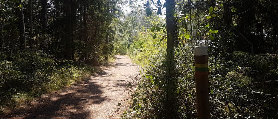 Trail running through Käringsund Resort & Conference.