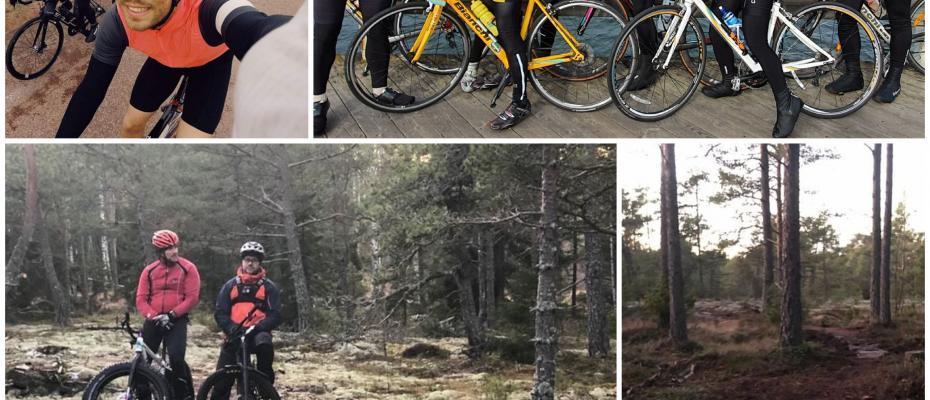 Roadbike or MTB - you choose